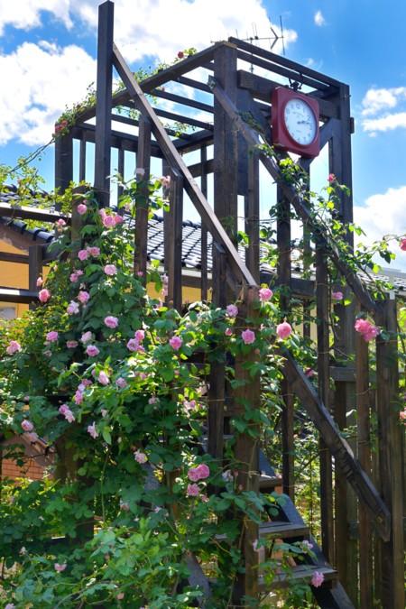 ツリーハウスあるお庭