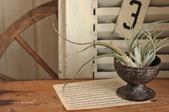 100均の灰皿をペイントして植木鉢を作ろう。