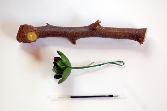 『週末DIY』 拾った枝でハンドメイド!世界にたったひとつの「ペン」