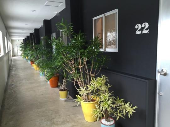 旅・たびたび・またTABI 日記(沖縄)