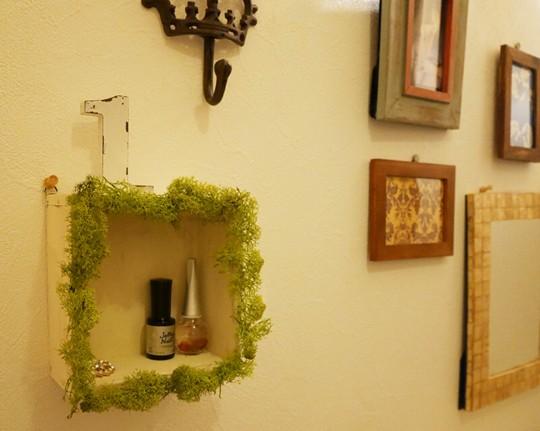 インテリアにちょっと緑をプラスしたい時、使えるアイスランドモス