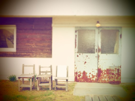 ワンコとステキカフェ